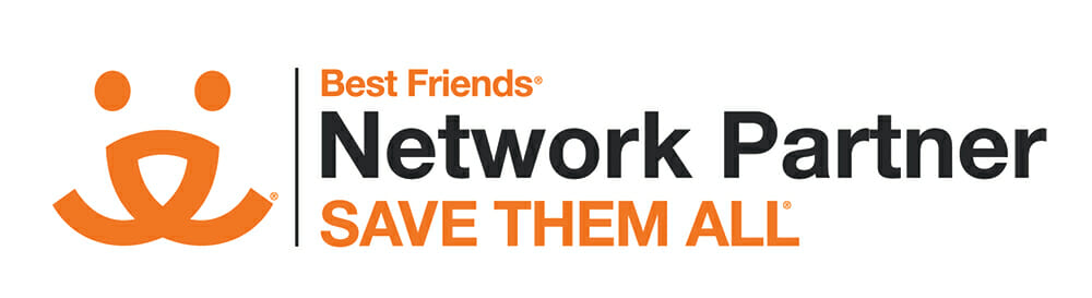Network_Partner_Logo