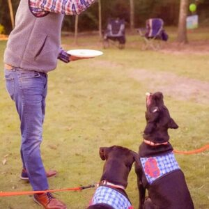 Mutts and Mead event-120