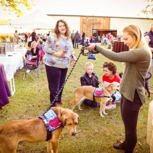 Mutts and Mead event-8